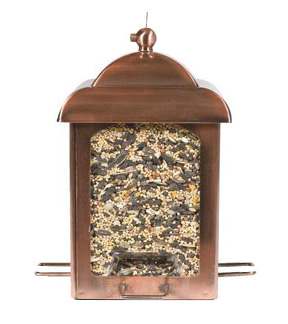 Mixed seed in a bird feeder